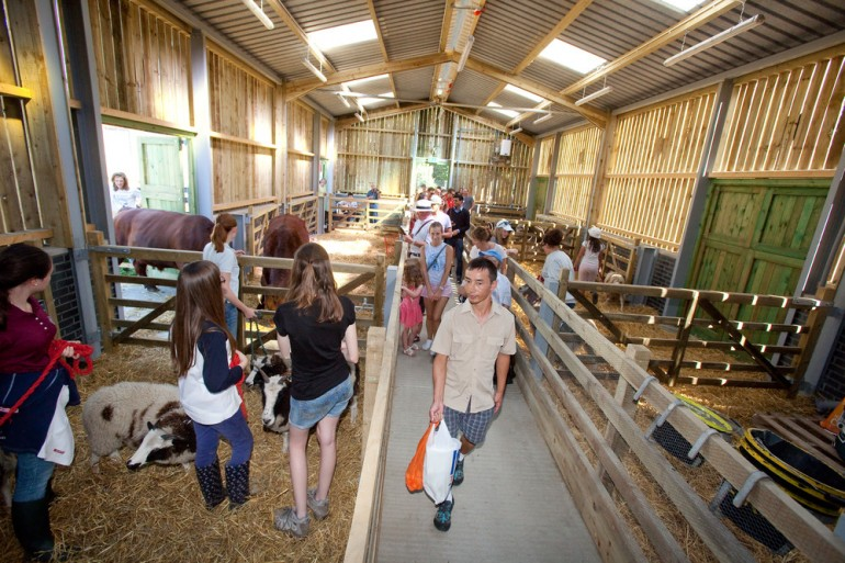Stepney City Farm officially opens new buildings following major Crossrail funded improvements
