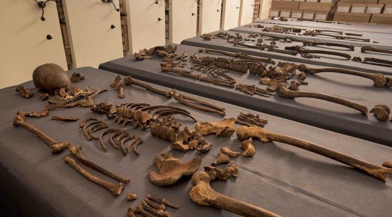 Five skeletons found to contain 1665 Great Plague bacteria_244609