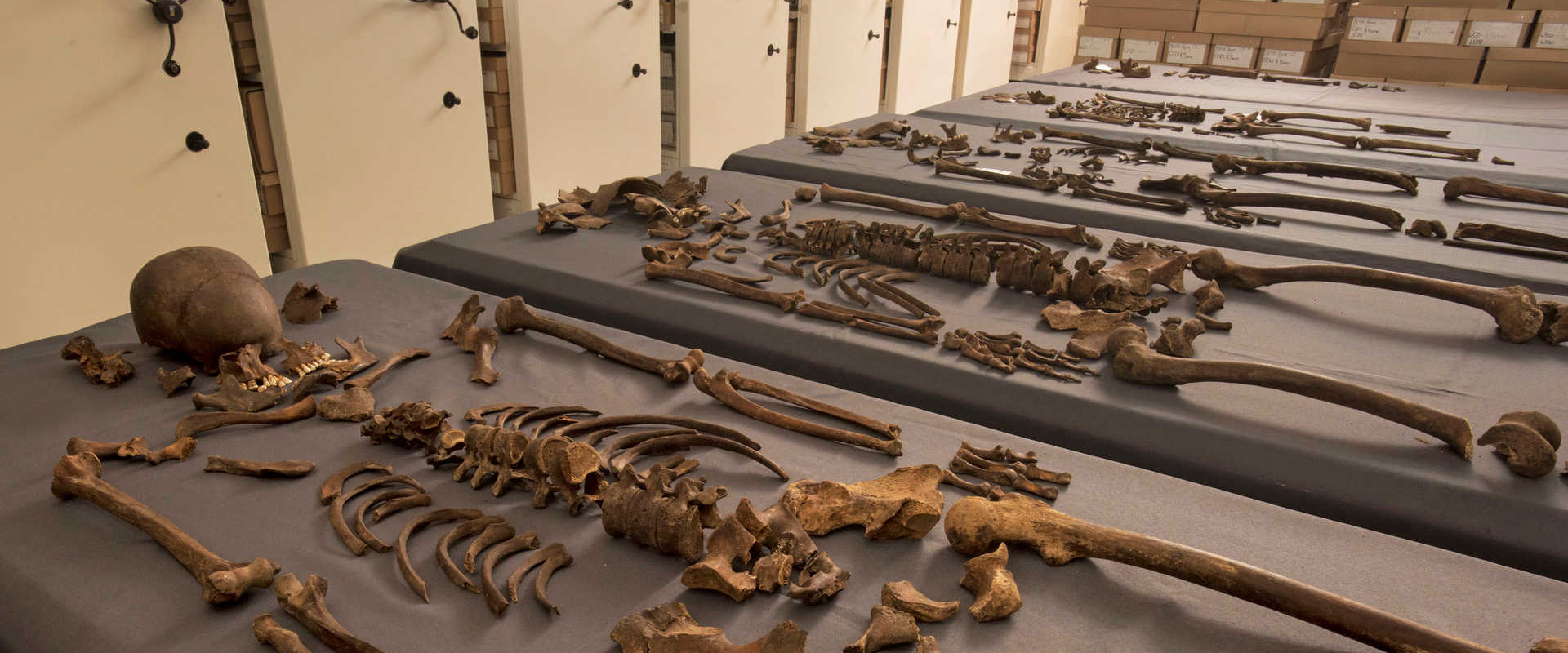 DNA of Great Plague identified for first time_carousel