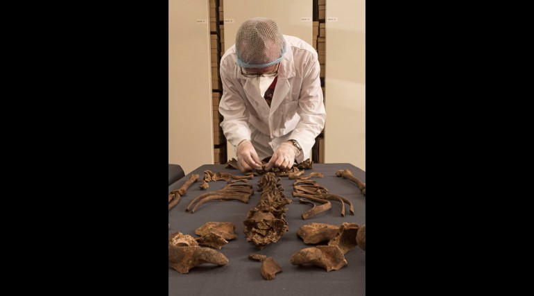 MOLA senior archaeologist Don Walker Henderson examines 1665 Great Plague victim_244613