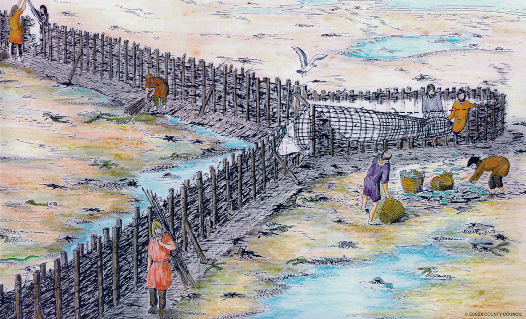 Pudding Mill Lane - illustration of similar timber fish weir from Essex_131476